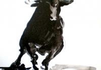 toros1